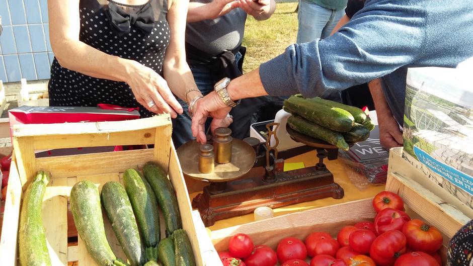 Vente solidaire de légumes : un succès !